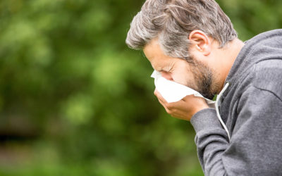 How to Ease Your Fall Allergies This Season